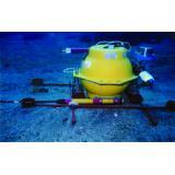 自己浮上式海底地震計を用いた観測の様子